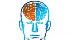 Neuroingenieros crean un sistema para convertir pensamientos en palabras
