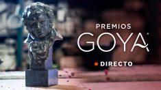 OKDIARIO sigue en directo la 33 edición de los premios Goya 2019.