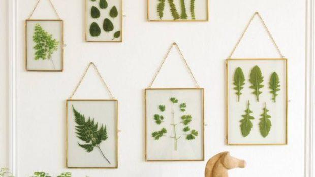 Cómo hacer cuadros con hojas