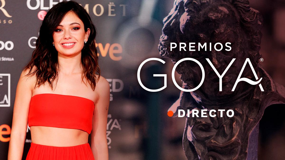 OKDIARIO sigue en directo la Alfombra Roja de la 33 edición de los premios Goya 2019.