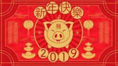 Este año se celebra el año chino.
