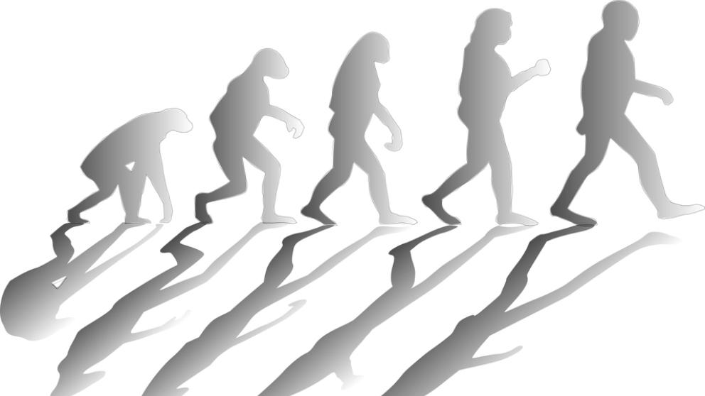 La teoría de la evolución de Charles Darwin