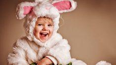 Guía de pasos para saber cómo hacer un disfraz de conejo casero
