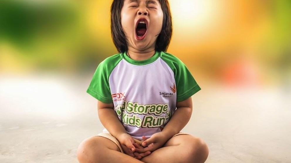 Algunos estudios concluyen que bostezar sirve para refrigerar el cerebro.