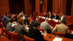 Comision del Parlament
