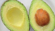 El aguacate aporta ácidos grasos como el omega 3.