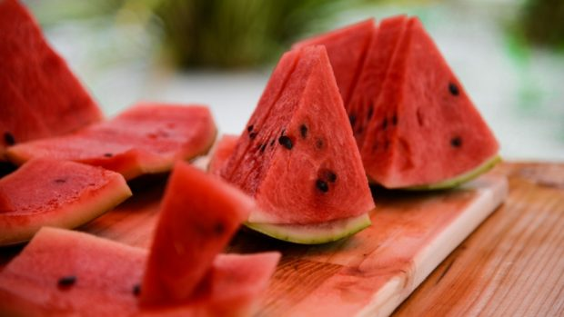 Cómo sembrar melones