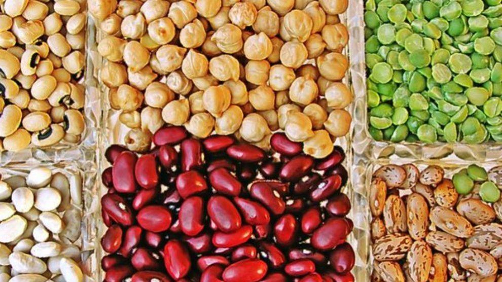 Las legumbres poseen un alto contenido en fibra.