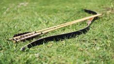 Guía para saber cómo hacer un arco y flechas