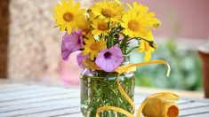 Guía para saber cómo hacer flores de rafia