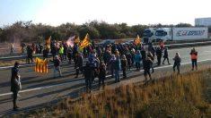 Reabren la AP-7 en La Ampolla (Tarragona) tras el corte de los violentos CDR (EP).