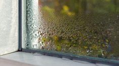 Pasos para evitar la humedad en casa