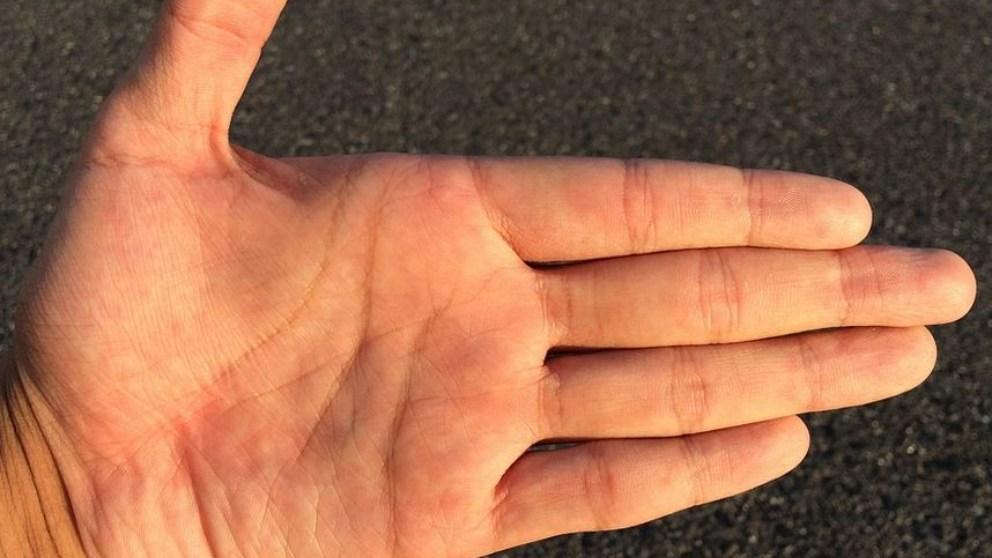 La quiromancia trata de dar respuesta al significado de las líneas de las manos.