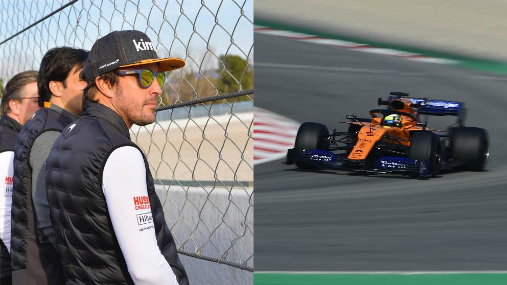 Fernando Alonso y Lando Norris.