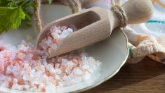 Es importante saber que el organismo necesita sal para funcionar de forma adecuada.