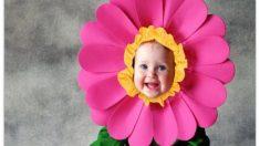 Pasos para hacer un disfraz de flor casero