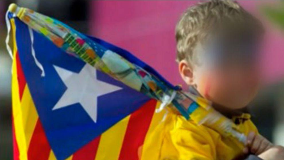 Un niño porta una bandera estelada en un acto independentista.