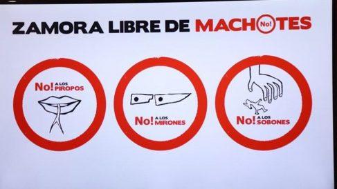 Las señales de la campaña 'ZAmora libre de machotes' contra el machismo en el carnaval de la localidad española.