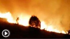Incendios en Orense (RRSS).