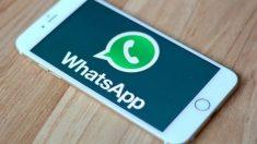 Descubre por qué debes actualizar WhatsApp a la última versión