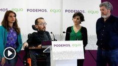 Equo irá a las elecciones generales junto a Unidas Podemos