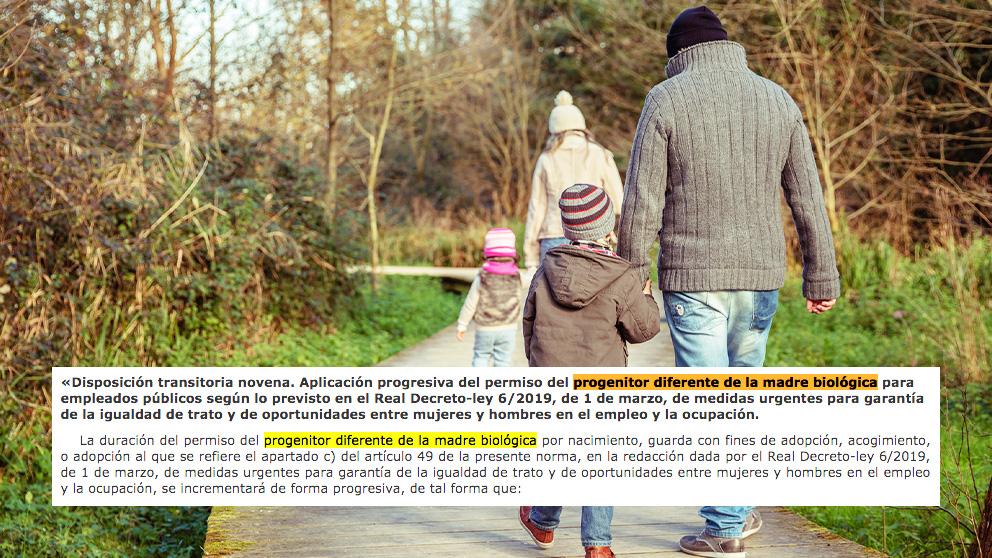 La nueva definición del término 'padre' que el Gobierno de Pedro Sánchez ha acuñado en uno de sus últimos reales decretos