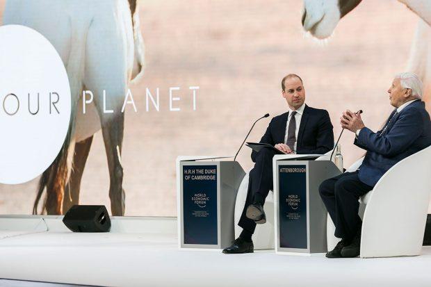 nuestro-planeta-netflix-attenbourough