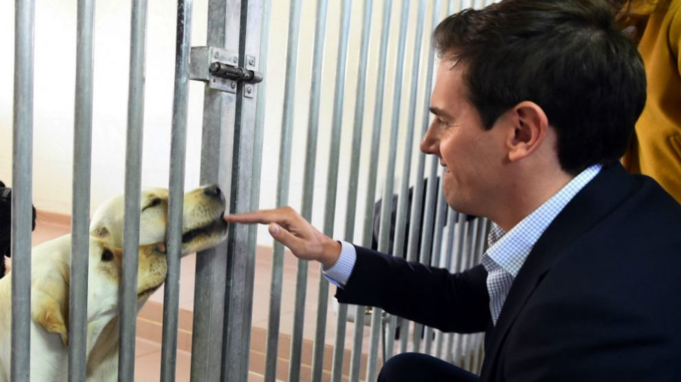 Albert Rivera juguetea con un perro guía