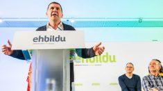 Arnaldo Otegi. Foto: EFE