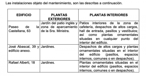 Un contrato del Gobierno da más puntos a la oferta de plantas navideñas que al plan de igualdad