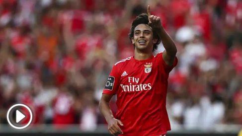 Joao Félix, durante un encuentro con el Benfica esta temporada