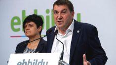 El coordinador general de EH Bildu, Arnaldo Otegi, y la diputada Marian Beitialarrangoitia en una rueda de prensa. (Foto: Efe)