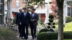 Carles Puigdemont, Quim Torra y Toni Comín. Foto: Europa Press
