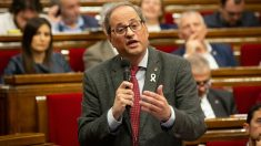 Quim Torra en el Parlament de Cataluña. Foto: Europa Press