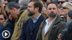 Santiago Abascal, Iván Espinosa de los Monterio y Javier Ortega Smith.