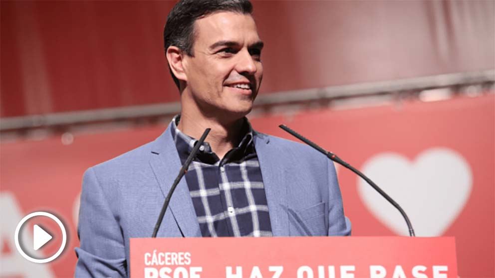 Pedro Sánchez, secretario general del PSOE. Foto. PSOE