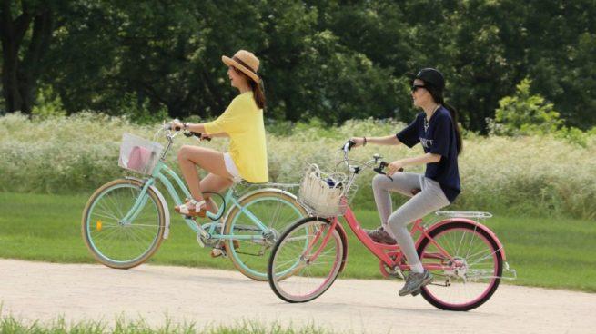 Día Mundial de la Bicicleta 2019