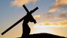 Descubre porqué se celebra el Viernes Santo en la Semana Santa.