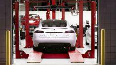 Tesla (Foto: EP/Archivo)