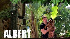 Albert pone rumbo a 'Supervivientes 2019'