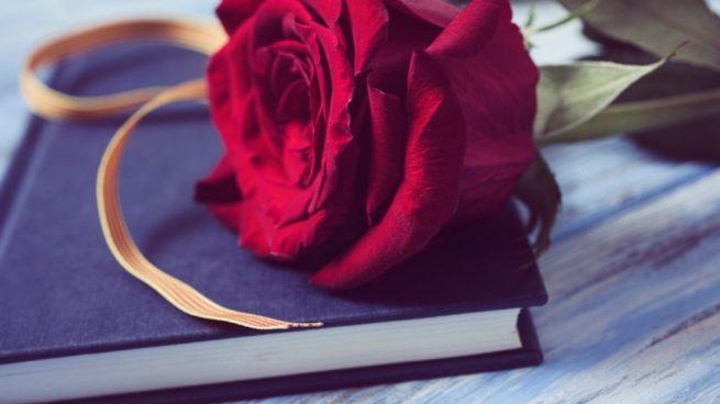 Feliz Sant Jordi 2019 Frases Para Felicitar El Día Del Libro