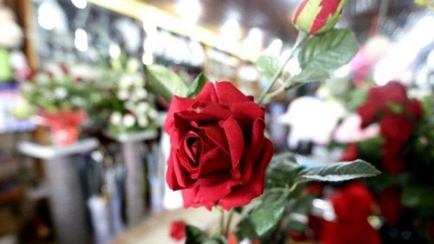 Cómo conservar una rosa eterna o preservada