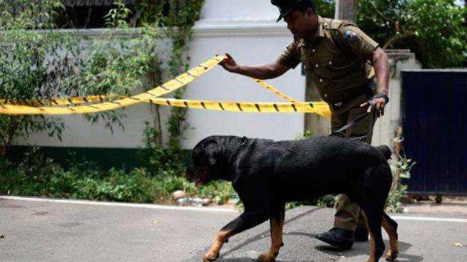 atentados-sri-lanka-1