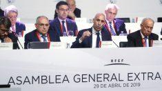 La Asamblea de la Federación aprueba la nueva Copa del Rey. (EFE)