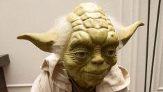 Descubre frases de Star Wars inspiradoras