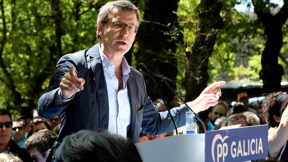 Alberto Núñez Feijóo (Foto: EFE)