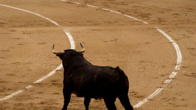 corridas de toros de la Feria de San Isidro 2019