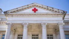 Por qué se celebra el 8 de mayo el Día Mundial de la Cruz Roja 2019
