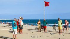 Turistas disfrutan en una playa de Cataluña (Foto: iStock)