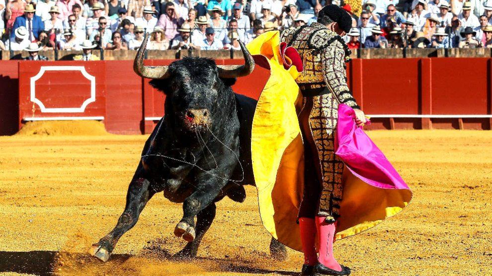 Octavio Chacón en una de sus faenas, este domingo en Sevilla (Foto: EFE).